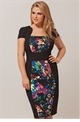 Curvy Florence Pencil Dress with Floral Panel