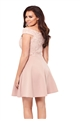 Jessica Wright Joshie Blush and Nude Lace Skater Dress
