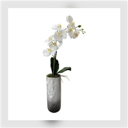 PLG Tall Marble Vase With Single Stem Orchid