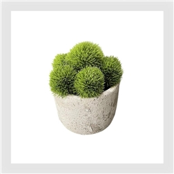 PLG Earthy round vase with dianthus