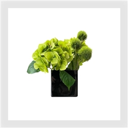 PLG Black Glass Vase With Dianthus & Hydrangea